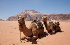 Private Wanderrundreise Jordanien